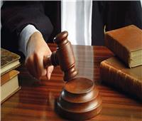 غدًا.. دعوى إلزام التضامن الاجتماعي بالتأمين على المحامين وأصحاب المهن الحرة