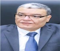 محافظ المنيا: 3 مليون جنيه لصيانة وإصلاح كوبري المنصورة