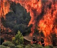 استراليا تستدعي الجيش للمساعدة في مكافحة حرائق الغابات بجنوب شرق البلاد