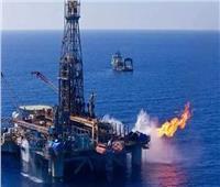 فيديو| خبير: اكتشافات حقول البترول دفعت الاستثمار الأجنبي للعمل في مصر