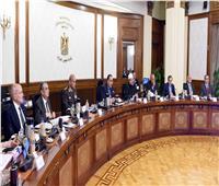 أول اجتماع مجلس وزراء في العام الجديد..مدبولى: 2020 يتطلب منا جهداً غير مسبوق لخدمة وطننا وشعبنا