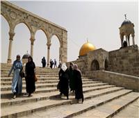 الخارجية الفلسطينية تندد بالاعتداءات الإسرائيلية المتكررة على المسجد الأقصى