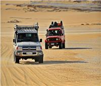 «شركات السياحة» تجدد حظرها لتنظيم رحلات سفاري بالواحات وسيوه بدون تصريح