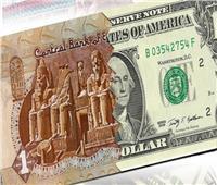 زيادة النقد الأجنبي بالبنوك تدفع الجنيه المصري للارتفاع 17 قرشًا أمام الدولار