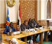 «الخارجية» تستضيف وزيري الاتصالات والصناعة بالكونغو الديمقراطية