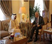 أبو الغيط يلتقي أمين عام مجلس حكماء المسلمين