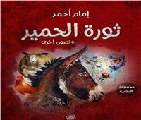 «ثورة الحمير» مجموعة قصصية جديدة في معرض الكتاب 2020