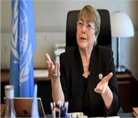 الأمم المتحدة تدعو لوقف فوري لإطلاق النار في إدلب السورية