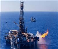 وزير البترول: انتقاد منتدى غاز شرق المتوسط يؤكد نجاح مصر