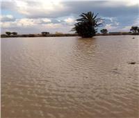 لليوم الثالث.. استمرار أعمال سحب تراكمات مياه الأمطار بشوارع وطرق مطروح