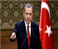 صورة  مؤيدو أردوغان يقبلون يده بمؤتمر برلين