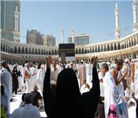 بالأرقام مصر الأولى عربياً في قائمة ضيوف الرحمن .. والسر«بوابة الحج والعمرة»