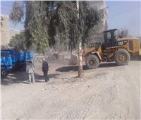 محافظ قنا يأمر برفع ٢٠ طن قمامة بمدينة أبوتشت