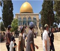 مستوطنون إسرائيليون يقتحمون الأقصى بحماية من شرطة الاحتلال