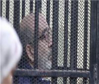 جنايات القاهرة تحدد مصير شقيق بطرس غالي فى اتهامه بتجارة الآثار