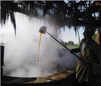 حكايات| سر العصير والمصاص.. طباخ العسل الأسود «إيده تتلف في حرير»