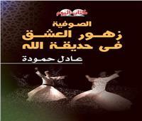 «كتاب اليوم» يشارك بـ 25 إصدار جديد بمعرض القاهرة الدولي الكتاب