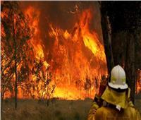مصرع 3 أمريكيين إثر تحطم طائرة مكافحة حرائق الغابات باستراليا