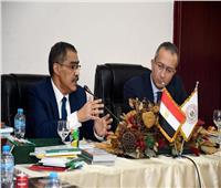 ضياء رشوان يطالب الإعلام الأفريقي بدور إيجابي في حل مشكلات القارة