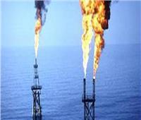 حقيقة استيراد مصر كميات كبيرة من الغاز الطبيعي لتغطية الاستهلاك المحلي