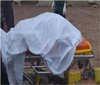 مصرع أمين شرطة في حادث تصادم بالمنصورة