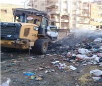 تكثيف حملات النظافة ودهان الأرصفة بشوارع المحلة