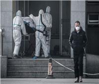 فيروس كورونا| المصريون بالصين: نحن في «أمان» وحملات التوعية منتشرة