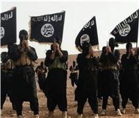 تنظيم داعش يدعو إلى مهاجمة اليهود وإفشال خطة ترامب