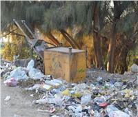 محافظ أسيوط يحيل مخالفات القمامة والإهمال إلى النيابة الإدارية