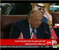 بث مباشر| كلمة سامح شكري باجتماع وزراء الخارجية العرب لمناقشة خطة السلام الأمريكية