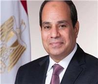 الرئيس السيسي يوجه بتكثيف الجهود للنهوض بقطاع الطيران المدني