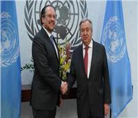 النمسا تبحث أليات تفعيل دور الأمم المتحدة فى «السلم والتنمية الدولية»