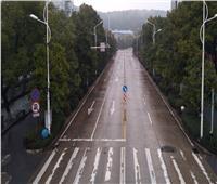 صور وفيديو| فيروس «كورونا».. حُرية سقفها السماء ومدادها جدرانك