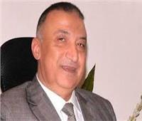 محافظة الإسكندرية ترفع 970 طن قمامة من شاطئ النخيل