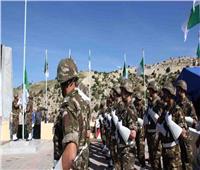 إحباط هجوم انتحاري على الجيش الجزائري.. ومقتل جندي