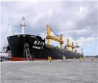 «على متنها صينيون».. إخضاع سفينة بميناء دمياط للحجر الصحي