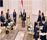 السيسي يلتقي الرئيس التنفيذي لشركة بريتيش بتروليوم البريطانية