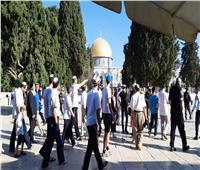 شرطة الاحتلال ومستوطنون يقتحمون ساحات المسجد الأقصى