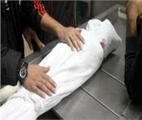 «لدغة ثعبان» تقتل «طفل رضيع وخاله» بقرية في الشرقية