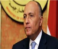 سامح شكري ووزيرة خارجية بلغاريا يبحثان أوجه العلاقات الثنائية في ميونج