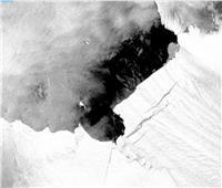 شاهد| تهدد العالم.. رصد ظاهرة «الخنازير المتولدة» بالقطب الجنوبي