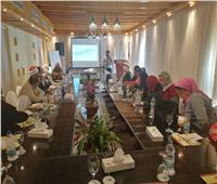 «تقييم إستراتيجية مناهضة العنف ضد المرأة 2030».. ورشة عمل بالغردقة