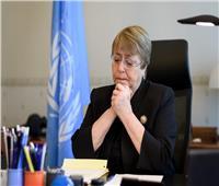 الأمم المتحدة لحقوق الإنسان تدين الهجمات والقتل في شمال سوريا