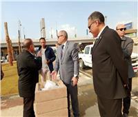 نائب محافظ القاهرة يتابع أعمال تطوير عزبة الهجانة