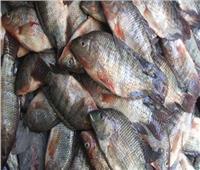 ننشر أسعار الأسماك في سوق العبور اليوم ١٩ فبراير