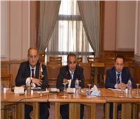 جولة جديدة من المشاورات السياسية بين مصر وأرمينيا