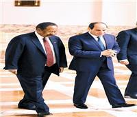 سقوط المشروع التركي في جنوب مصر