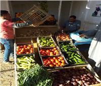 محافظ البحر الأحمر يسلم مواطن من ذوي الاحتياجات الخاصة مكانا لبيع الخضار
