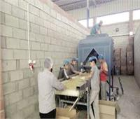 العريش تنظم دورة تدريبية لتأهيل الشباب لسوق العمل الحر