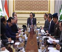 رئيس الوزراء يتابع خطوات تنفيذ المشروع القومي للاكتفاء من مشتقات البلازما